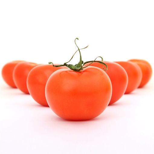 Picture of עגבניה אשכולות