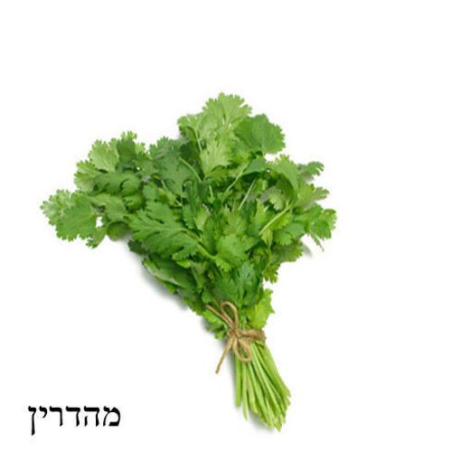 Picture of כוסברה מהדרין