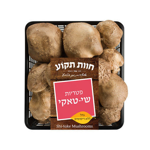 Picture of פטריות שי טאקי