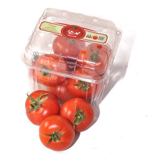 Picture of עגבניית מגי
