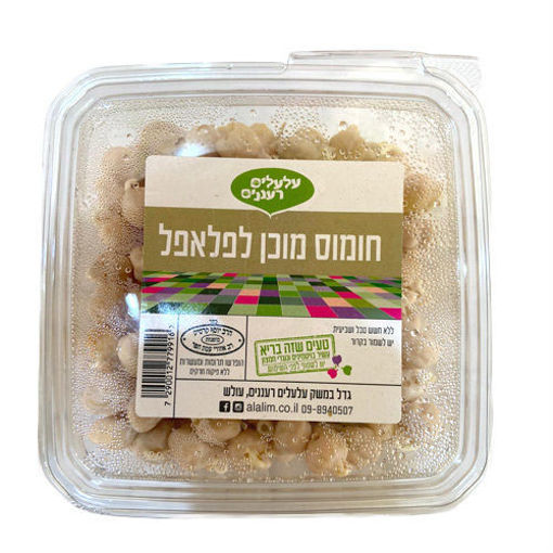 Picture of חומוס מוכן לפלאפל