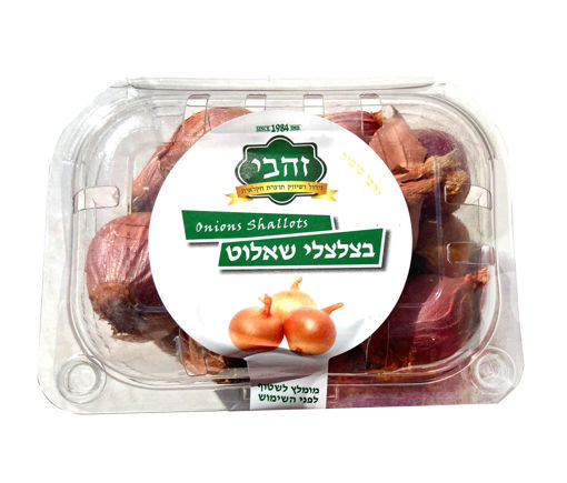 Picture of בצלי שאלוט- יח